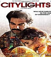 CityLights 2014 film