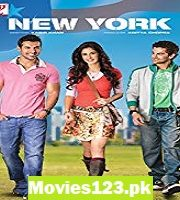 New york 2009 film