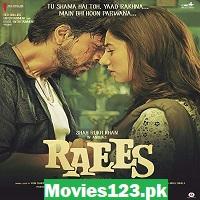 Raees 2017 Hindi Film