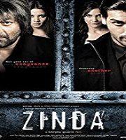 Zinda 2006 Film
