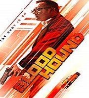 Bloodhound 2020 Film
