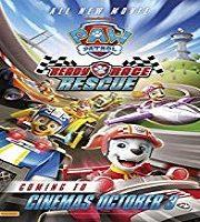 Paw Patrol Ready Race Rescue 2019 Film
