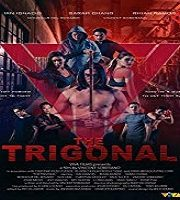 The Trigonal Fight for Justice 2020 English Dubbed