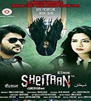 Raaz-E-Sheitaan 2017 Hindi Film