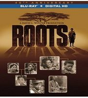 Roots Part 2 (2016) Hindi Dubbed Dual Audio Bluray Film 123movies