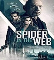 Spider In The Web 2019 Film