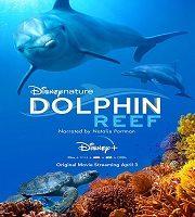 Dolphin Reef 2020 Film 123movies