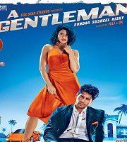 A Gentleman 2017 Hindi 123movies Film