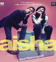 Aisha 2010 Hindi 123movies Film