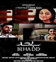 Behadd 2013 Pakistani Urdu 123movies Film