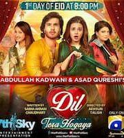 Dil Tera Hogaya 2020 Telefilm Pakistani 123movies Film
