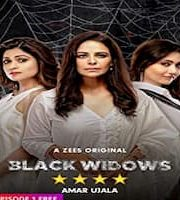 Black Widows 2020 Hindi Season 1 Complete Web Series 123movies Film