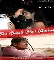 Teri Diwali Meri Christmas 2020 Hindi 123movies Film