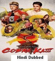 Cobra Kai 2021 Hindi Season 3 Complete Web Series 123movies NetFlix