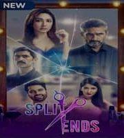Split Ends 2021 Hindi Season 1 Complete Web Series 123movies