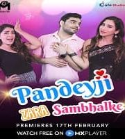 Pandeyji Zara Sambhalke 2021 Hindi Season 1 Complete Web Series 123movies Film